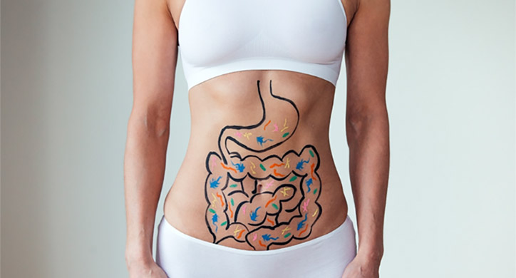 Your Second Brain: Gut Microbiota
