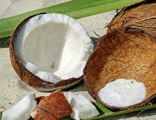 CocoNUTs!