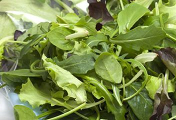 The FDA's Role in Solving a Foodborne Illness Outbreak