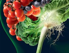 The MIND Diet: Healthy Eating for a Healthy Brain