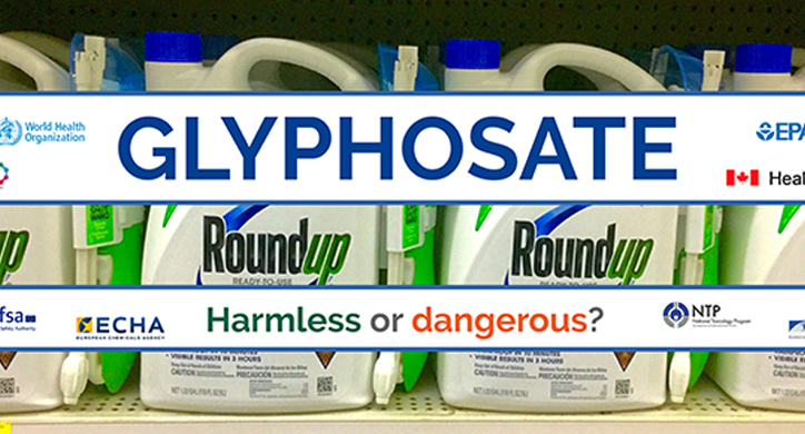 Does glyphosate—the world's most heavily-used herbicide—pose serious harm to humans?