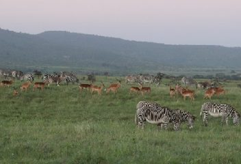 People and Nature: Thriving Together in the African Grasslands