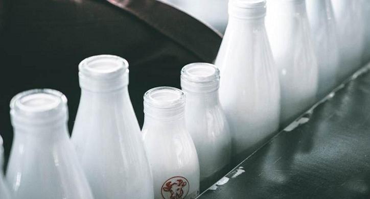 Dairy: An Industry in Quiet Turmoil